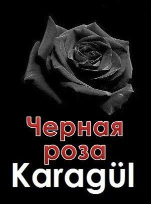 Чёрная роза русская озвучка все серии
