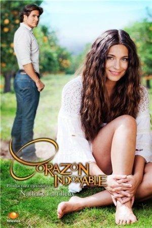 Непокорное сердце Все серии (Мексика, 2013) смотреть онлайн латиноамериканский сериал на русском языке