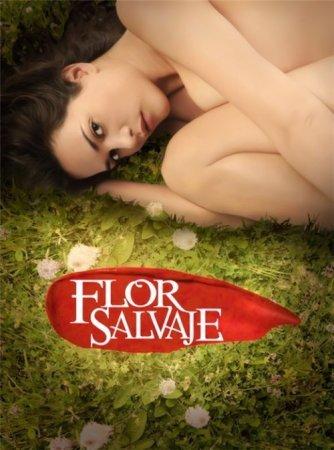 Дикий цветок / Flor Salvaje Все серии (Телемундо, 2011) смотреть онлайн латиноамериканский сериал на русском языке