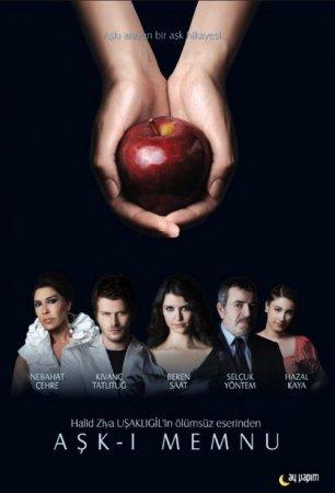 Запретная любовь / Ask-I Memnu Все серии (Турция 2008) смотреть онлайн на русском языке